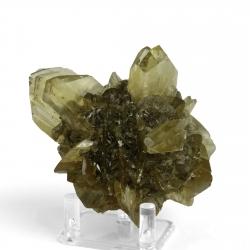 Gypsum, 9.2 x 6.8 x 6.7 cm.