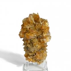 Gypsum, 11.5 x 6 x 5.5 cm.