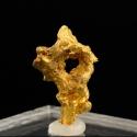 Gold, 2.1 x 1.3 x 1 cm.