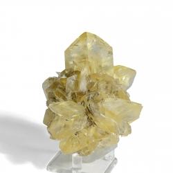 Gypsum, 10 x 9.5 x 7 cm.