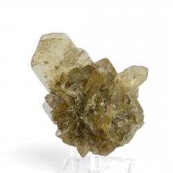 Gypsum, 10 x 8 x 7 cm.
