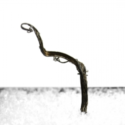 Silver, 1.8 x 1.2 x 1 cm.