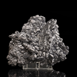 Galena, Krushev dol Mine, Bulgaria - large cabinet