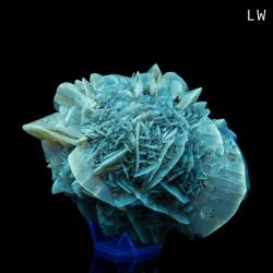 Gypsum, 9 x 6.5 x 5 cm.