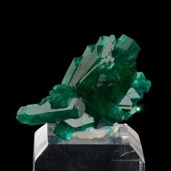 Dioptase, 3 x 3 x 1.5 cm.