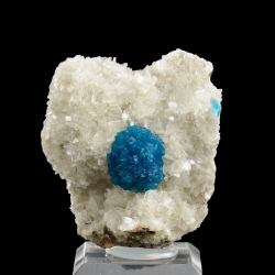 Cavansite, Wagholi Quarries, India - miniature
