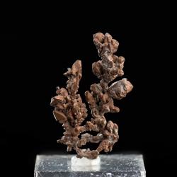 Copper, 4 x 2.5 x 1 cm.