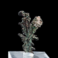 Copper, Molinello Mine, Italy - miniature