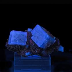 Fluorite, Niobec Mine, Canada - miniature