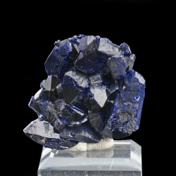 Azurite, Milpillas Mine, Mexico - miniature