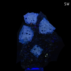 Fluorite, Elmwood Mine, United States - small cabinet
