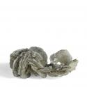 Polylithionite, 8.4 x 3.8 x 2.9 cm.